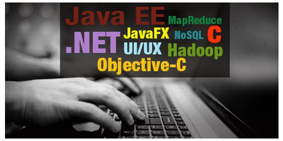 Software_skills