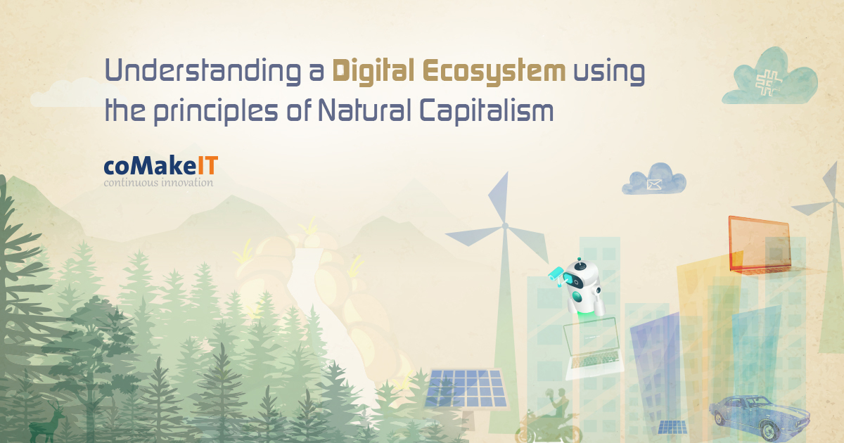 Understanding Digital Ecosystem using the principles of Natural Capitalism